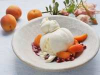 BURRATA with Apricots and Pomegranate