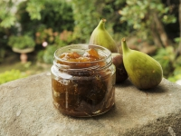 FIG JAM HORIZONTAL LEFT