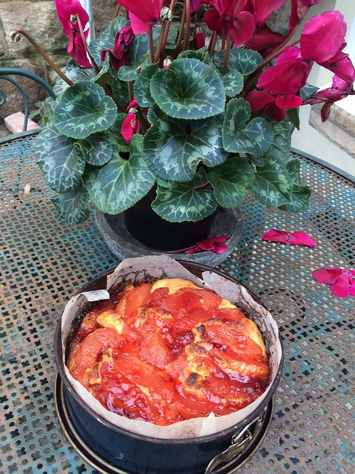 Maggie Beers Upside Down Quince Cake