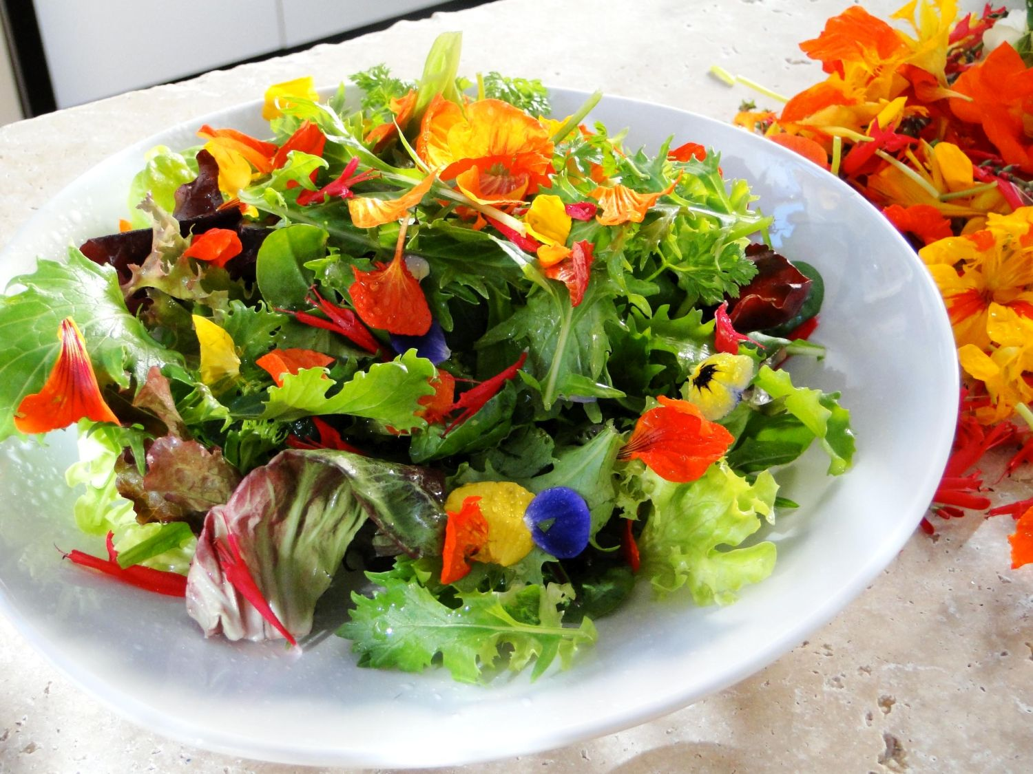 Mini Chef Edible Farm Flower Salad