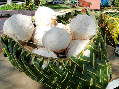 Coconuts in woven basket
