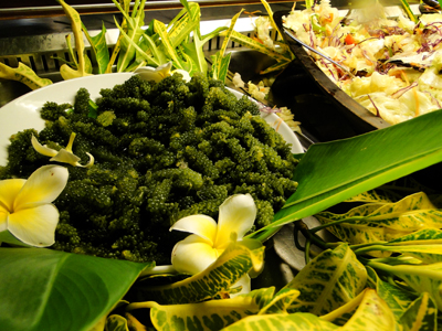 Sea Grapes served as part of the buffet at Aggie's Gueshouse