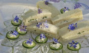 Cucumber sandwiches with borage