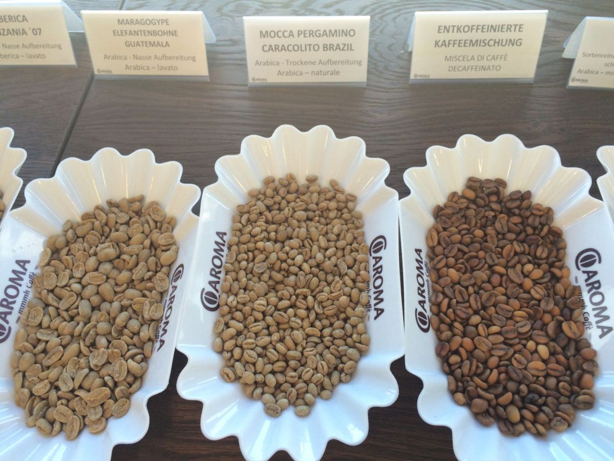 Just A Few Of The Different Types Of Coffee Beans On Display At Caroma's  Coffee Classes