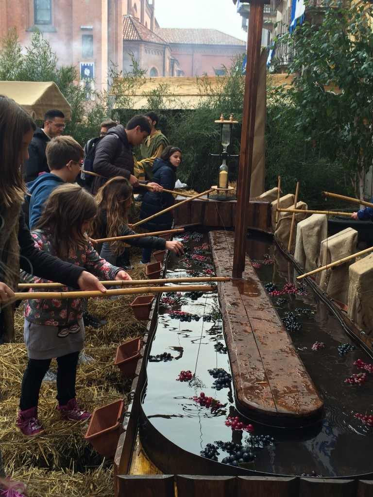 Fishing for grapes: one of the games played at the Medieval Fair (Il Baccanale del Tartufo) Alba