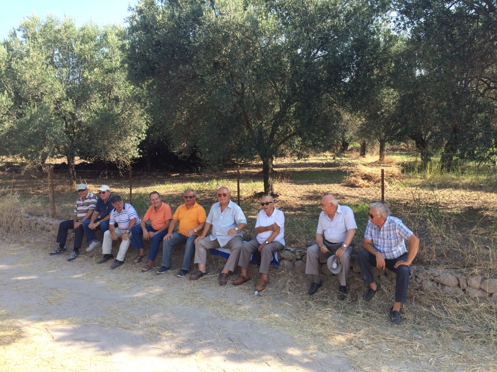 Men lined up on the fence near the little church set in the olive groves