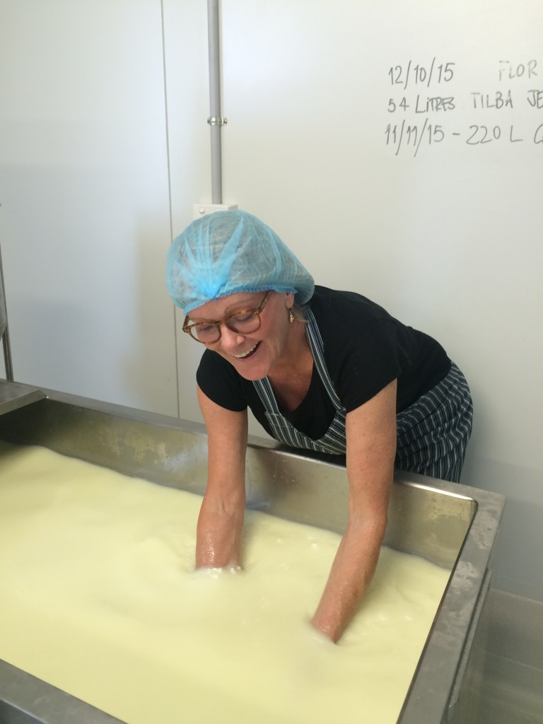 Rosie Cupitt with her hands in the curds and whey