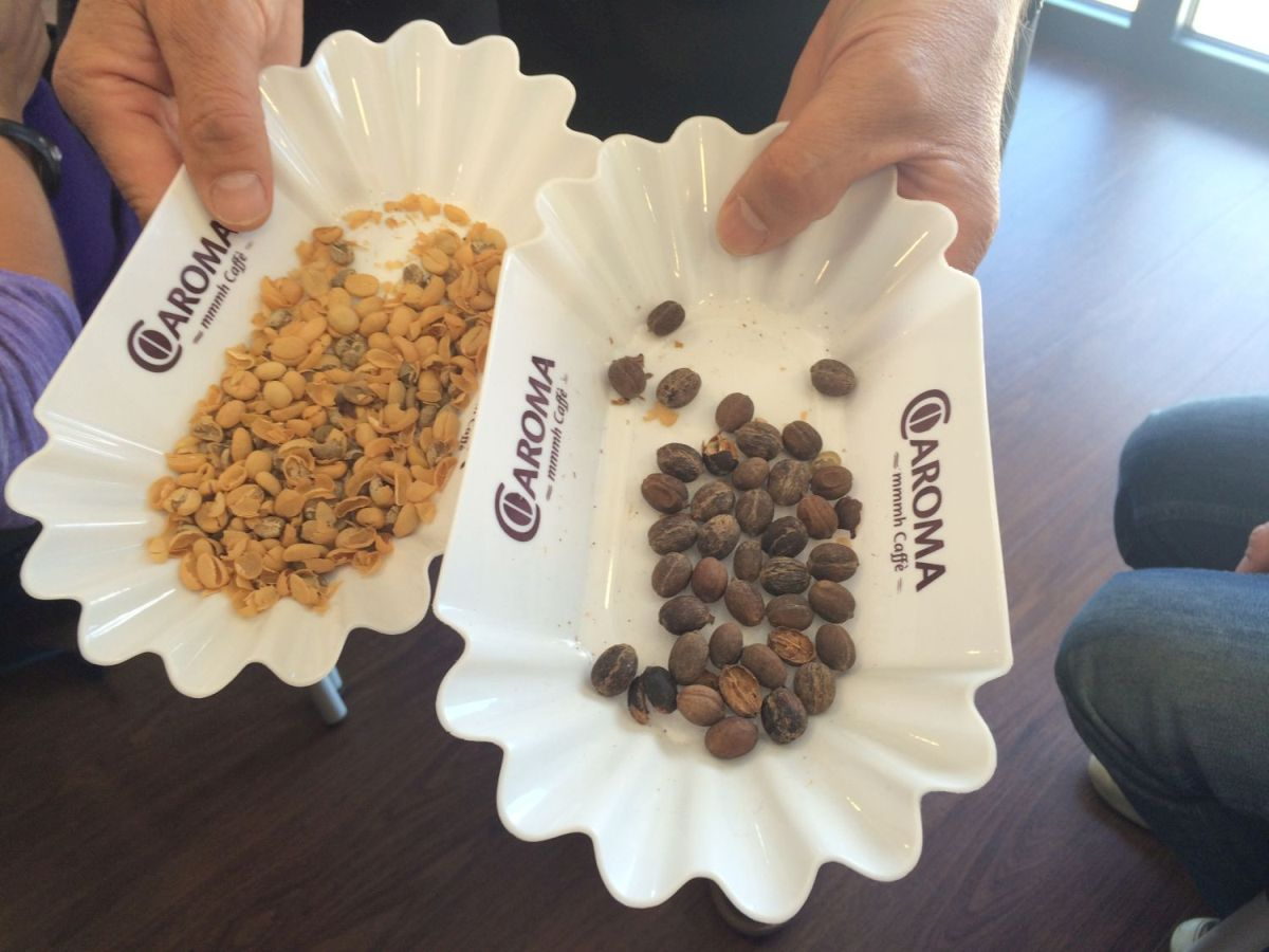 Washed Beans (left); Natural Beans (right)